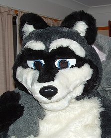 File:RistinRaccoonFursuit.jpg