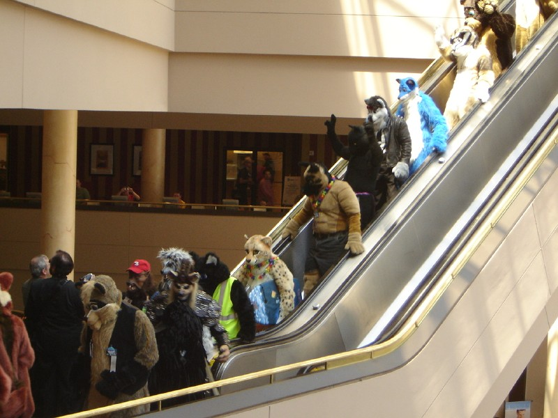 File:More Fursuit Parade.jpg