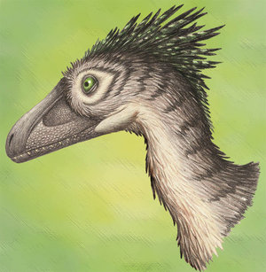 File:Deinonychus Portrait by Ixerin.jpg