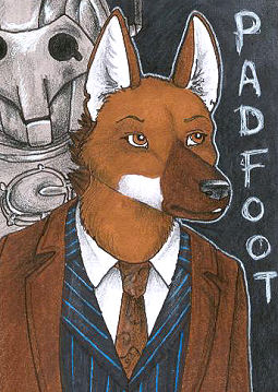 File:Padfoot Dr Who.jpg