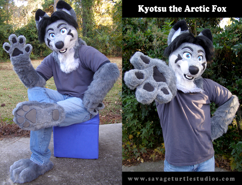 Kyotsu's fursuit as seen on Savageturtle's website
