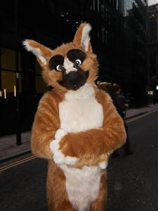 File:Aniboxer fursuit small.jpg