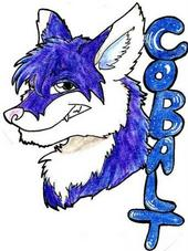Cobalt badge.jpg