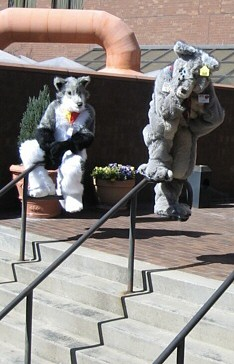 File:FWA2007 Growly going to jump.jpg