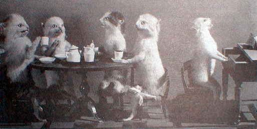 Exhibition Displays : Anthropomorphic taxidermy wikifur the furry encyclopedia