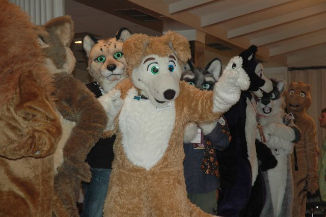File:Howloween2008-fursuitgames-Aphinity.jpg
