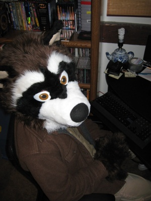 File:Drraccoon.jpg