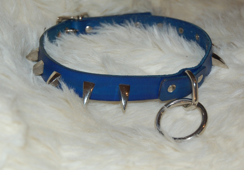 Dog Collars Used For Training