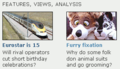 BBCNewsFurryFeature.png