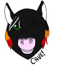 Headshot of Cave.jpeg