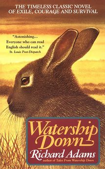 Watership Down cover.jpg