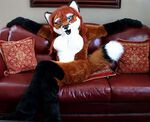 Autumn Vixen poses in her fursuit.