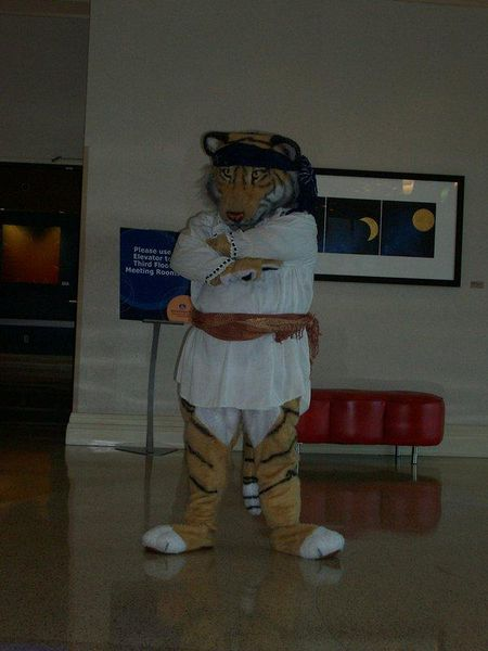 File:Tommi Tigre The Pirate.jpg