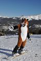 Breckenridge-Photo-FritzFox-Snowboarding.jpg