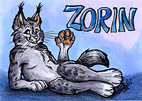 Zorin the Lynx