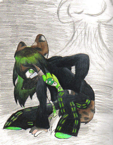 File:Stray fursona by Stray.jpg