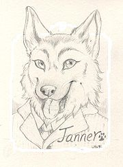 Janner-badge-small1.JPG