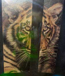 Tiger hologram at MIT Museum