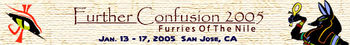 Further Confusion 2005 banner.jpg