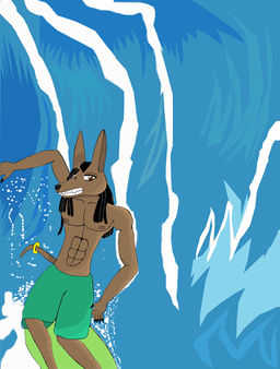 Anubis surfin summer 2010.jpg