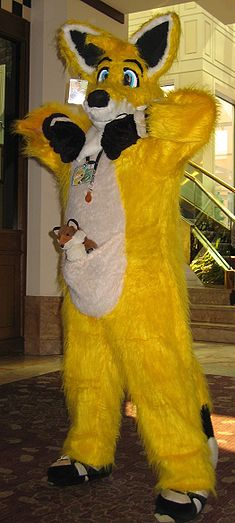 AC 2007 unknown fox.JPG