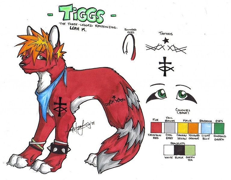 File:Tiggstar ref sheet.jpg