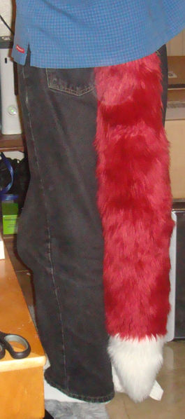 File:Foxie tail.jpg