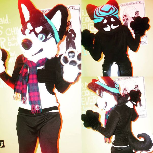 File:Sparxtraxx sparx traxx Fursuit Created By Lazy Lion Fursuits.jpg