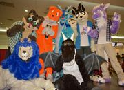 Fursuiting at Vee's Birthday 2012