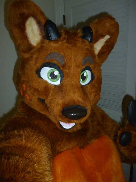 File:Reaux fursuit.jpg