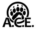 ACE Logo.jpeg