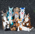 FursuitFracasChamps2007-2013.jpg