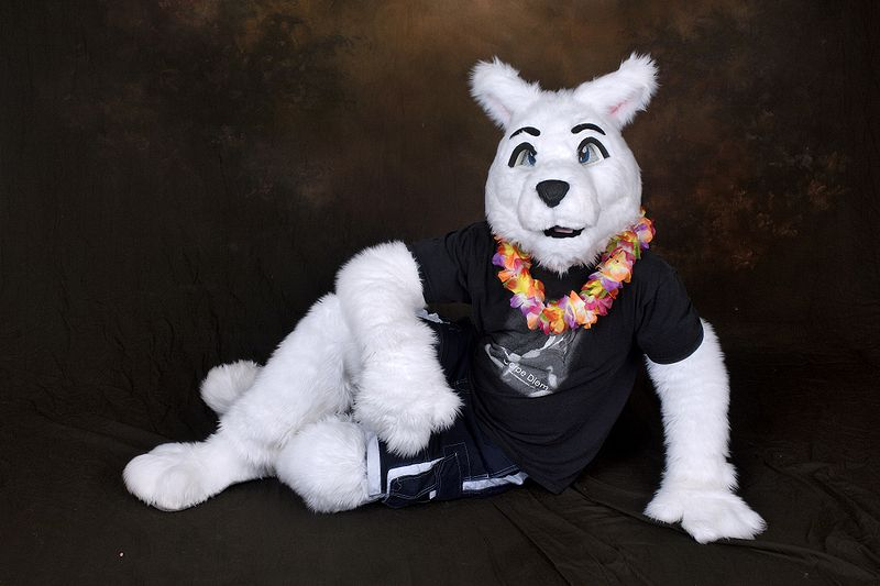 File:FurtherConfusion2009-Photo-SpookWolf.jpg