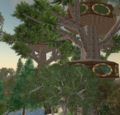 SecondLifeForestDeluxeApartments.png