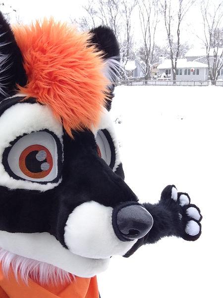 Beagle In Red Wikifur The Furry Encyclopedia