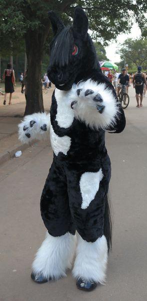 Lizaruk Wikifur The Furry Encyclopedia