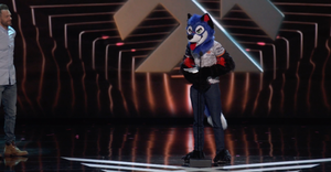 SonicFoxat2018GameAwards.png