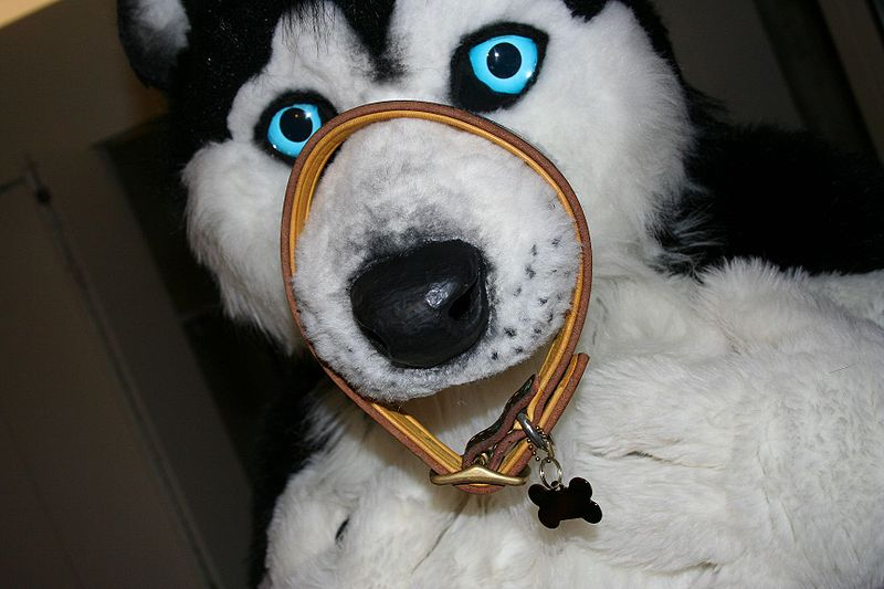 Siku Husky Wikifur The Furry Encyclopedia