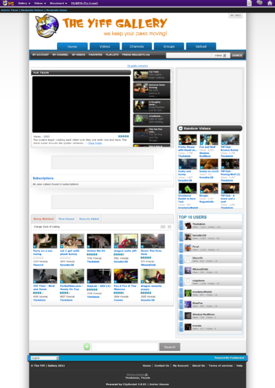 Vids.theyiffgallery.com screen capture 2011-12-3-2-10-22.png