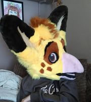 Mango the Canary griffin fursuit head.jpeg